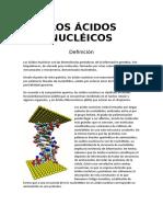 LOS_ÁCIDOS_NUCLÉICOS[1]