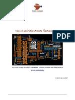 TICE_ET_SCENARISATION_PEDAGOGIQUE.pdf