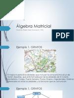 Programa curso Álgebra Matricial