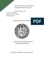 informe final biodep
