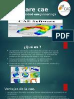 Software cae.pptx