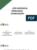 F.REIS LV.1 -LIBERAÃ_Ã_O-MOBILIDADE-ESTABILIZAÃ_Ã_O ARTICULAR (1)