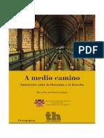 A_medio_camino_intertextos_entre_la_lite (1).pdf