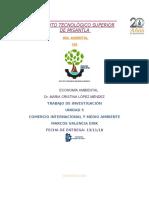 Comercio Internacional y Medio Ambiente