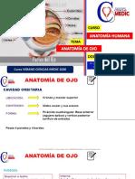 ANATOMIA-DE-OJO-CIENCIAS-MEDIC-2020.pdf