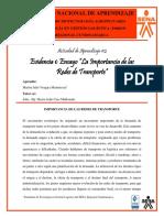 Importancia de las Redes de Transporte - Marlon Vergara .pdf
