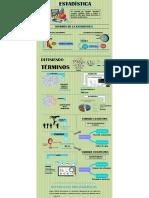 Infografia de estadística VI - B.pdf