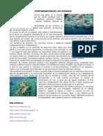LA CONTAMINACIÓN DE LOS OCEANOS.docx