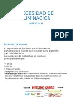 NECESIDAD DE ELIMINACION.pptx