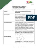 Guías de EDUC. ARTÍSTICA. 5° GRADO