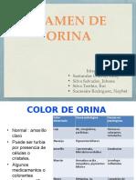 EX. DE ORINA.pptx