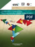América Latina y el Caribe y China Recursos naturales y medio ambiente 2015.pdf