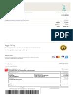 invoice_47B8177FAD12427C909A905DCBEFF0B6.pdf
