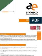 PRESENTACION-ANDAMIO-DE-CARGA.pdf