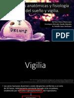 Anatomia y fisiologia del sueño 2  FISIO 2016.pdf