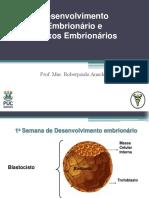 Histologia Placenta e Anexos