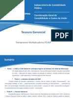 Tesouro Gerencial Multiplicadores.pptx