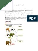 Solucionario digital.docx
