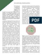Dinámica molecular y función proteica.docx