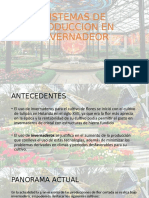 SISTEMAS DE PRODUCCION EN INVERNADEOR.pptx