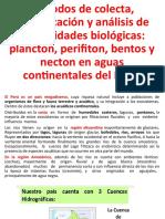 ANÁLISIS DE LAS COMUNIDADES ACUÁTICAS