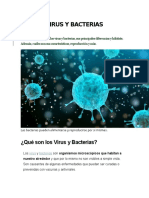 VIRUS Y BACTERIAS Y SUS CARACTERISTICAS