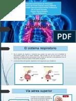 Presentación medico