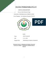 CBR PPD.docx