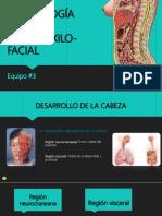 embriologaespecialbucomaxilofacial5-170820233534 (1).pdf