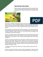 Cerita Rakyat Keong Mas dari Jawa Timur