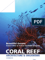 Beautiful Oceans- Coral Reef -Architecture and Organisms