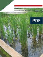 Constructed Wetland Article Municipal - CWRDM (1).pdf