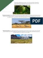tipos de clima y paisajes.docx