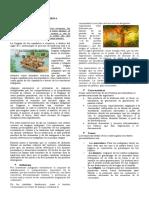 Guía Literatura Precolombina 8.doc