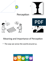 4_Perception.pptx