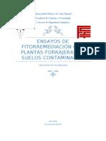ABSORCIÓN Y ACUMULACIÓN DE METALES PESADOS.docx