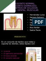 periodonto
