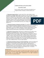 Contaminacion Del Agua en El Peru