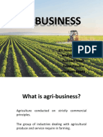 AGRI BUSINESS NK.pptx