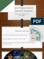 terapiaocupacionalenalteracionessensitivas-170919041810