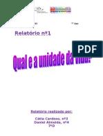 Relatório nº1