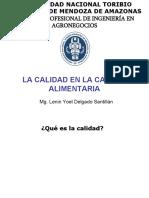 ESTUDIO DE LA ORGANIZACION DIAPOSITIVA MODELO