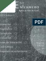 Procesos Enfermeros Pae.pdf