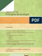 Taller N° 11- Ecositemas Biologia 1.pptx