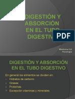 3 digestin y absorcion tubo digestivo