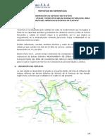 201609201442_5_TDR EXP ESTUDIO DEFINITIVO DGER-JULIACA