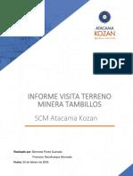 Informe Tambillos
