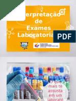 INTERPRETAÇÃO EX LABORATORIAIS.pptx