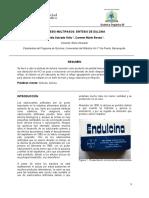 SINTESIS DE DULCINA 1.docx