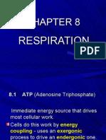 biology-respiration- Chapter 8